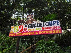 entree zoo des mamelles