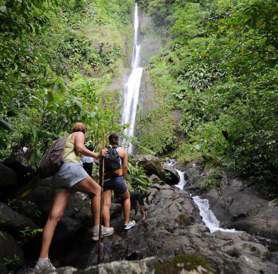 Activité en Guadeloupe : partir en randonnée vers les chutes Moreau