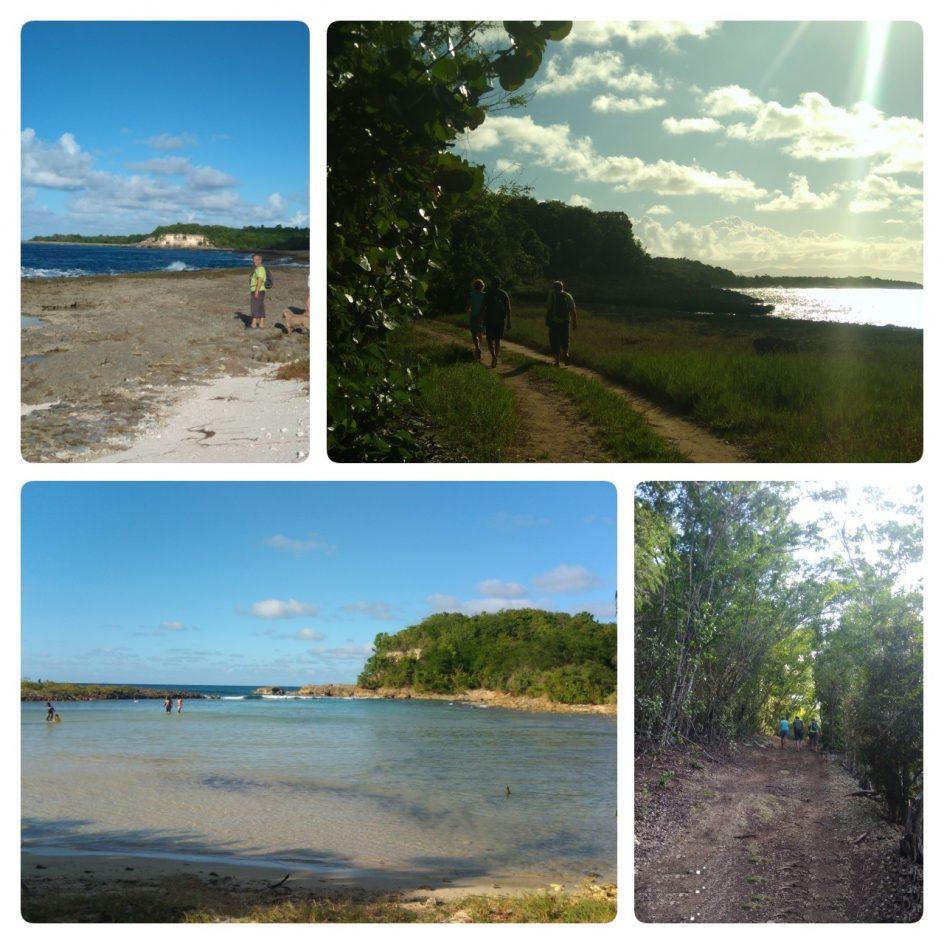 Découvrir la Guadeloupe depuis le gîte : randonnée entre Anse Bertrand et Port Louis